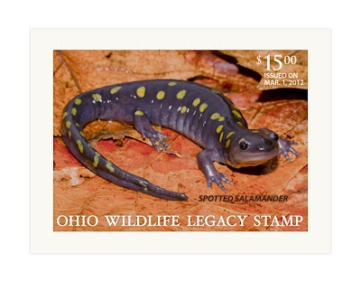 Ohio Wildlife Legacy Stamp Available for Purchase
