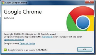Download Google Chrome 12