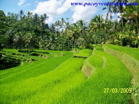 Gunung Kawi en Bali