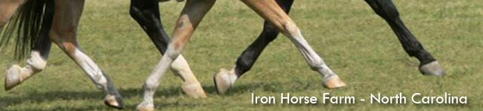 Iron Horse Farm