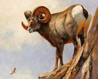 pinturas-realistas-de-animales-salvajes