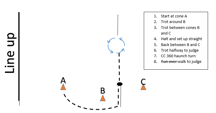 Intermediate 4H horse showmanship pattern