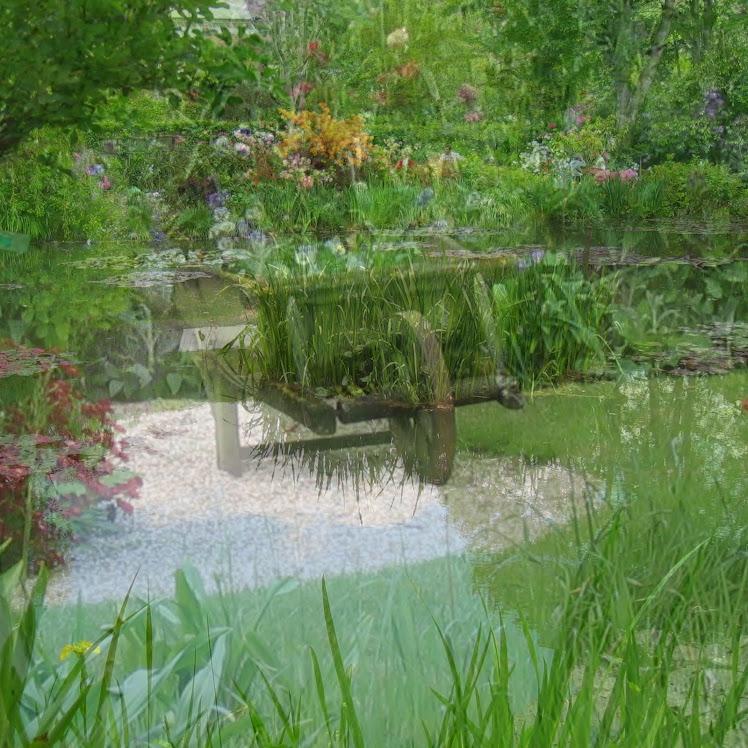 Calme  &  Sérénité du jardin