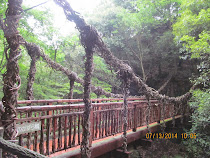Rope and vine bridges found along descent path from summit of Mt. Maya, Kobe, Japan