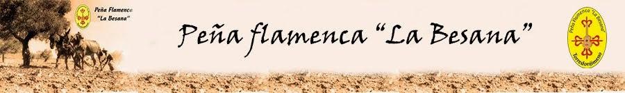 Peña flamenca La Besana