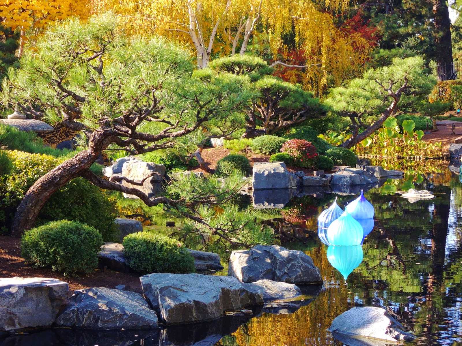 Japanese garden, glass art, Dale Chihuly