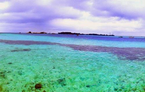Wisata Pulau Semak Daun