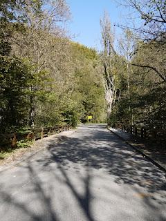 Bild 1: Aufstieg auf den Karlsberg