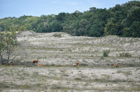 sat periprava delta dunarii oameni turisti