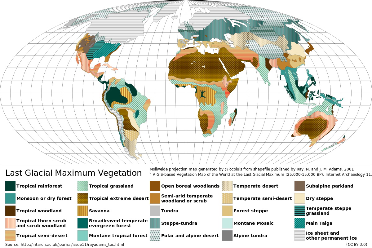 Last Glacial Maximum vegetation