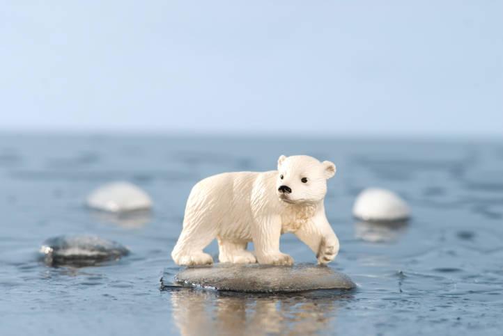 Dlc global warming essay