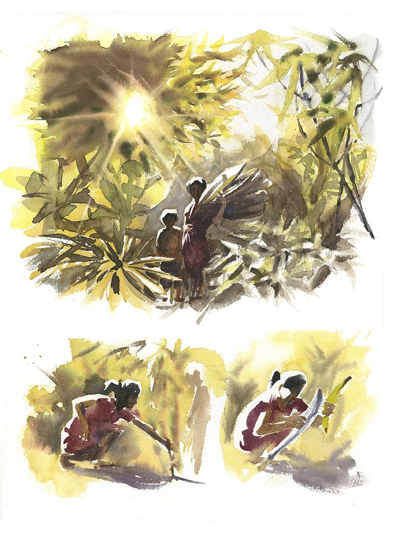 jardin achuar feuilles pour le maito
