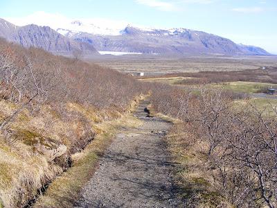 Parcul national Skaftafell, Islanda