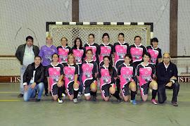 Equipa Senior 2011/2012