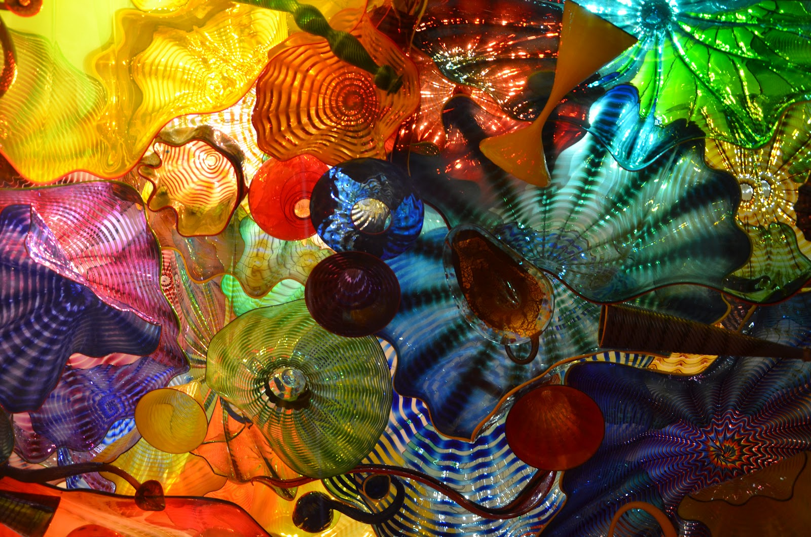 Enjoying life with nina in seattle a must see chihuly - Chihuly garden and glass discount tickets ...