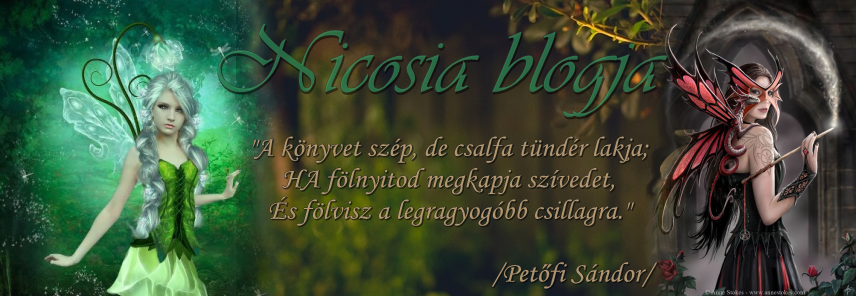 Nicosia Blogja