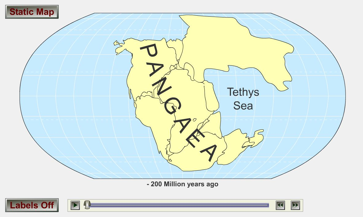 continental drift and plate tectonics essay