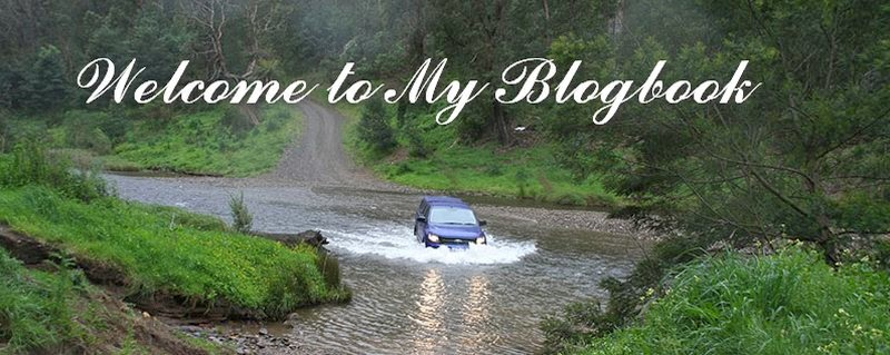 Welcome to My Blogbook