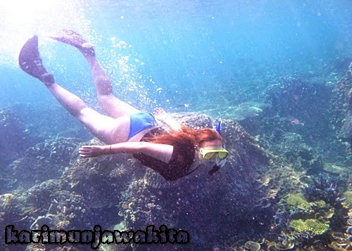 foto under water wisata karimun jawa