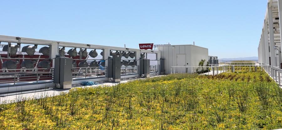levi's stadium green roof