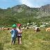 Bambini e montagna: istruzioni per l'uso