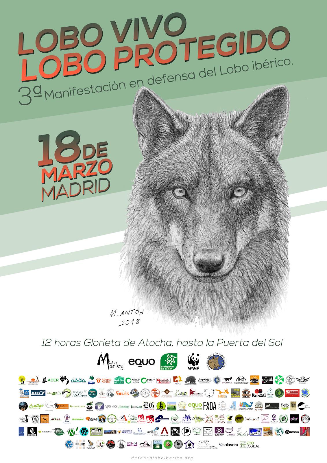 Concentración por el Lobo Ibérico