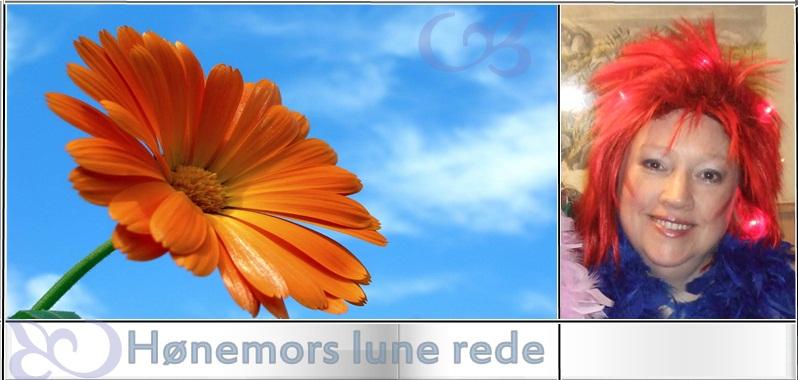 Hønemors Lune Rede