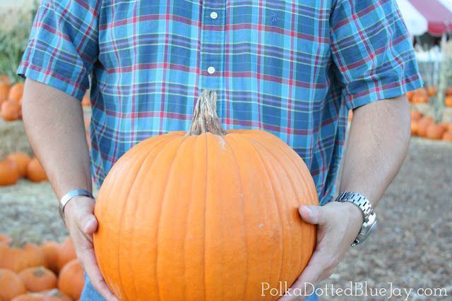 Pumpkin Patch Plaid // LISTERINE® Rinse Made Rad Plaid Bottles // Fall Fashion // Target Sale #RinseMadeRad #CollectiveBias #ad