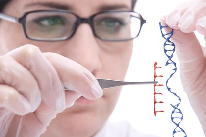 is genetic engineering ethically right Can genetic engineering be ethical by dr michael w fox, senior scholar, bioethics  my own reaction to the banner committee is that it is a step in the right .