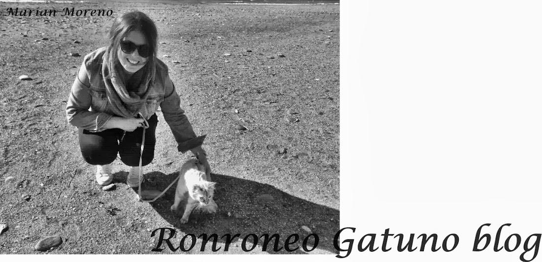 Ronroneo Gatuno