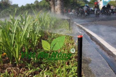 Vòi tưới phun bãi cỏ rainbird 1800