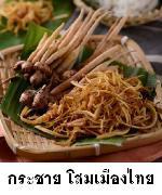กระชายโสมเมืองไทย