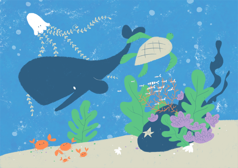 fish, water, whale, turtle, jellyfish, sea