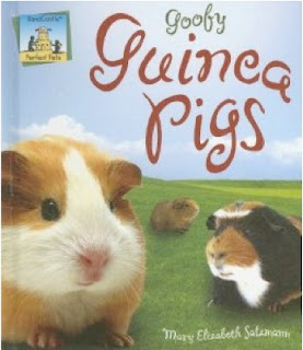 bookcover of Goofy Guinea Pigs by Mary Elizabeth Salzmann