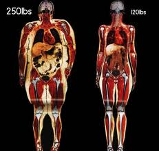 How ro lose weight easily image 1