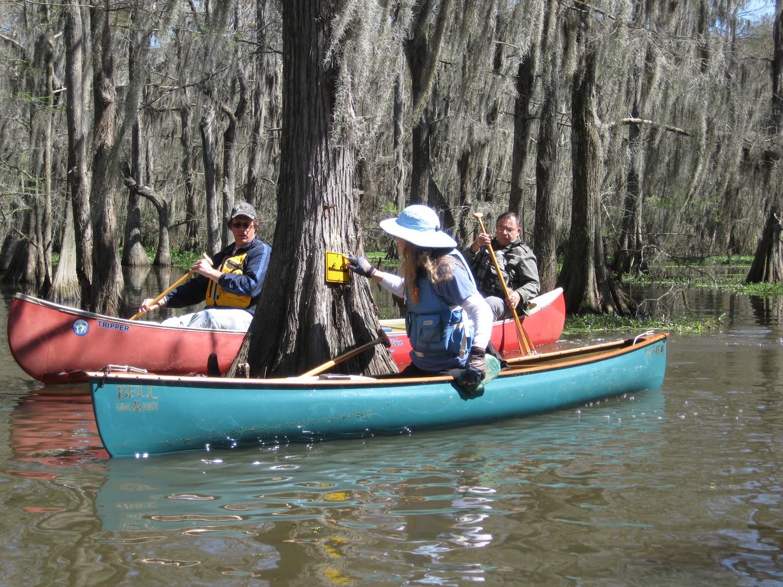 Chicot State Park Trail Map on