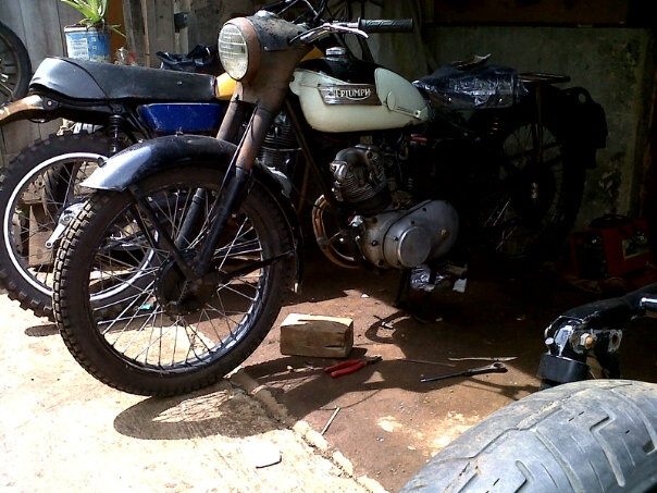 1953 triumph terrier 200cc for sale classic and. Black Bedroom Furniture Sets. Home Design Ideas