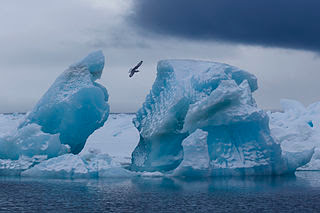 Wonders of Nature and Nature Landscape Photography Franz-Josef Land Reserve in Northern Russia
