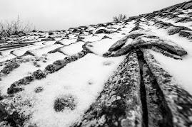 Invierno en el blog