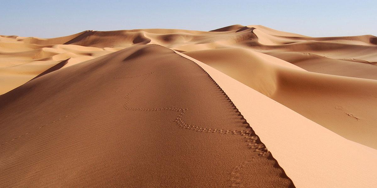 Landscapes Desert l 300+ Muhteşem HD Twitter Kapak Fotoğrafları