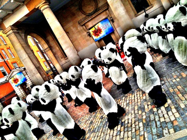 Panda Awareness Week London