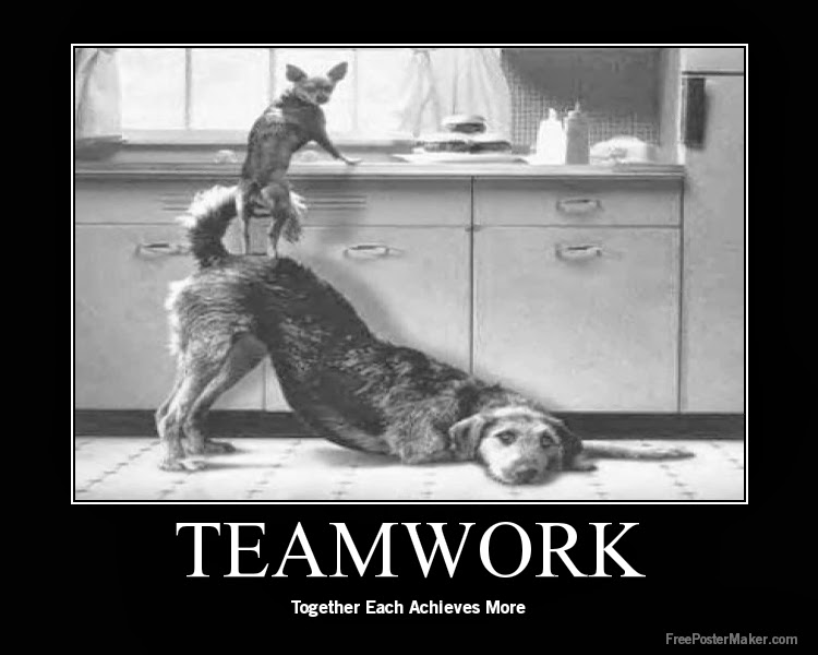 Teamwork Quotes...