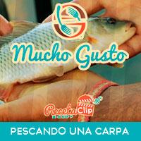 Cocina, Javier García, embalse, carpa, caña, cebo, río, Extremadura, cómo pescar,