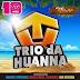 Trio da Huanna - CD Promocional - Verão 2015