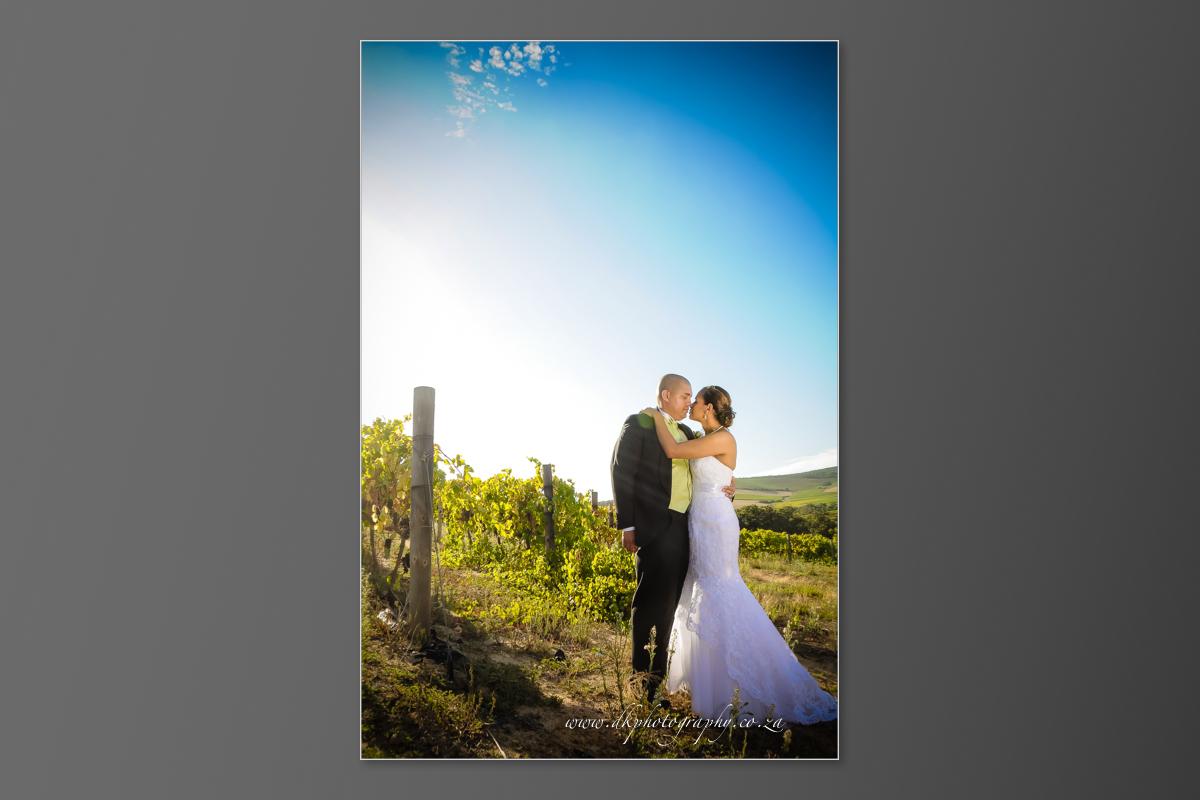 DK Photography DVD+slideshow-312 Cleo & Heinrich's Wedding in D'Aria, Durbanville  Cape Town Wedding photographer