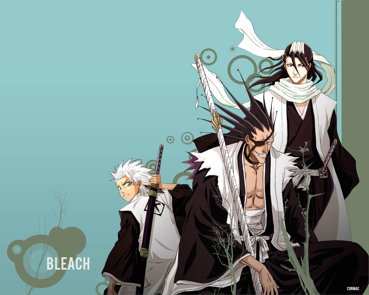 Bleach wallpaper captain 10
