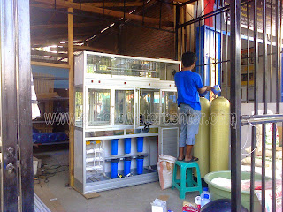 beli depot air minum isi ulang