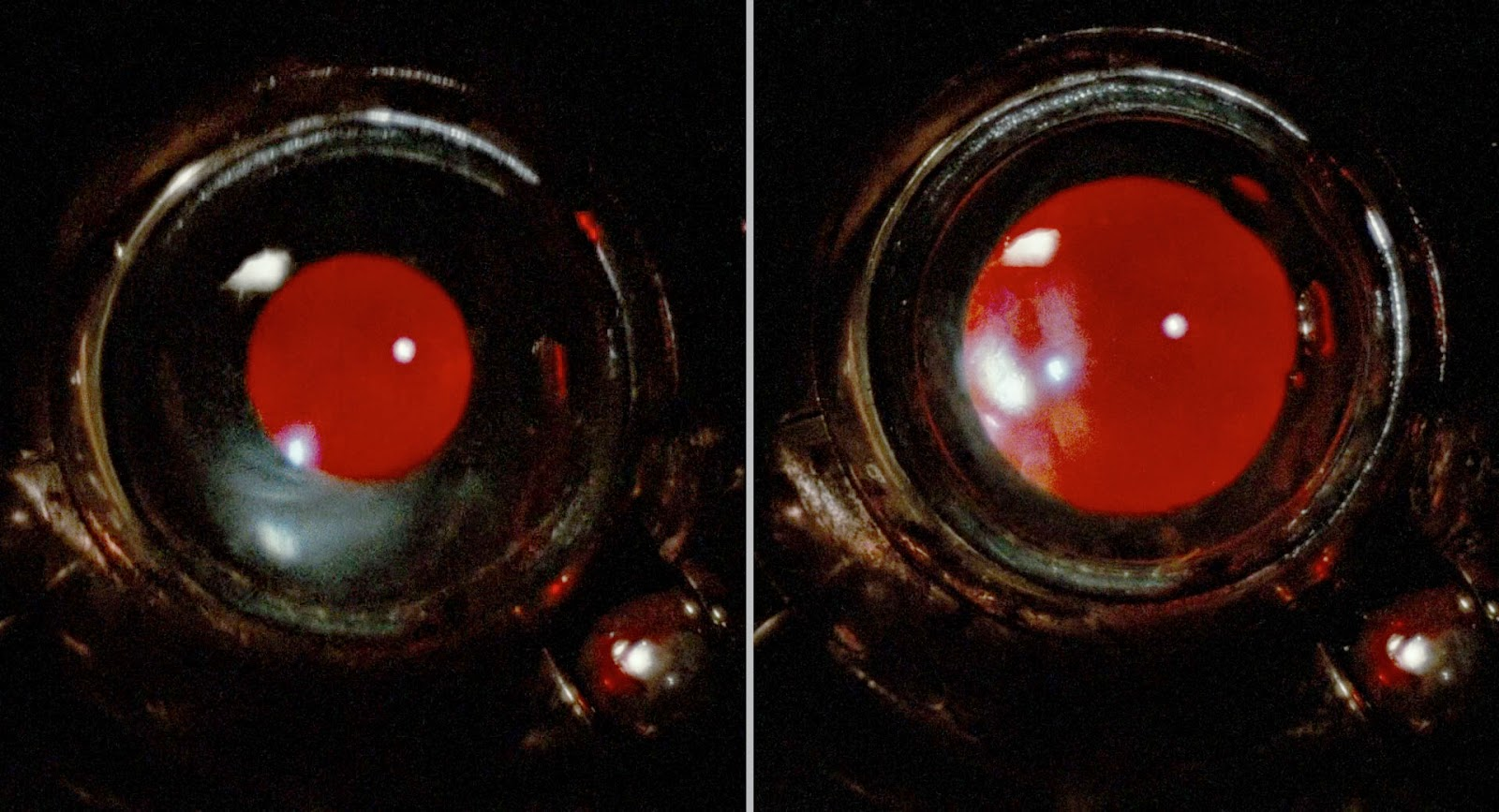 T800-101: Building a Terminator Endo Skull: RESEARCH - EYES