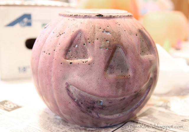 IMG_7905 Rit dye cement pumpkins