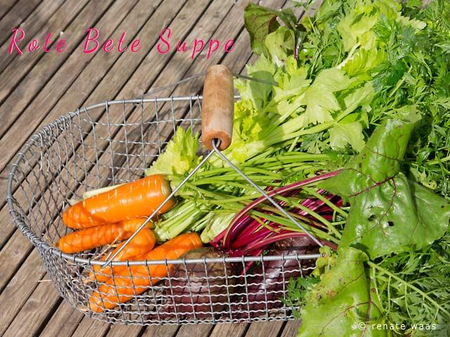 Diät - Suppe, Rezepte für Gemüse aus dem Garten, Gemüse aus dem Garten, Gemüseküche